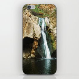 Paradise Falls iPhone Skin
