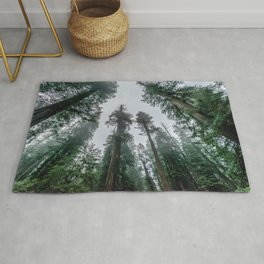 Redwood Forest Adventure IV - Nature Photography Rug