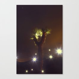 Joshua Tree Nightlights Canvas Print