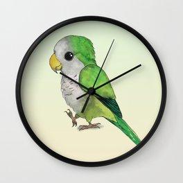 Very cute parrot Wall Clock