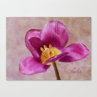 tulip Canvas Prints featuring Tulip by Fine Art by Rina