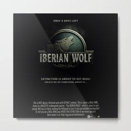Iberian Wolf Metal Print