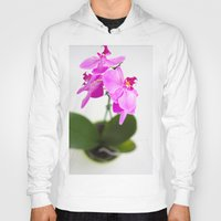 orchid Hoodies featuring Orchid by Darko Rikalo