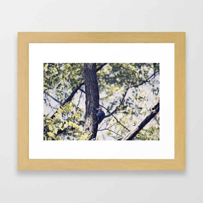 Little Tree Hugger Framed Art Print