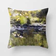 Creekside View Throw Pillow