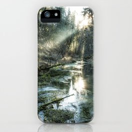 McKenzie River Tributary iPhone Case