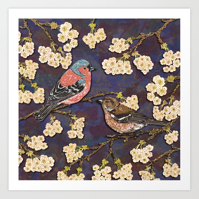 Chaffinches in Cherry Blossom Art Print