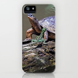 Lizard and River Turtle at Tortuguero iPhone Case
