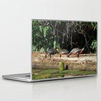 turtles Laptop & iPad Skins featuring Turtles by Stu Willard