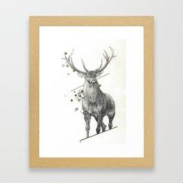 Divine - Buck Framed Art Print