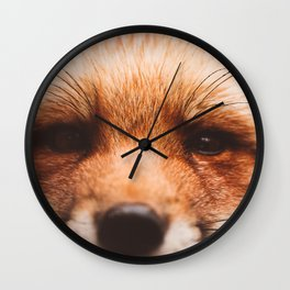 Red fox 2 Wall Clock