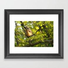 A peek between the leaves Framed Art Print