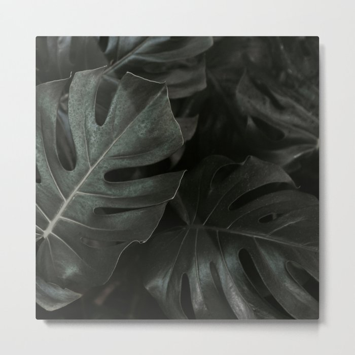 Monstera Fade Metal Print