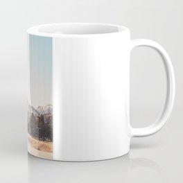 driving through arizona.  Coffee Mug