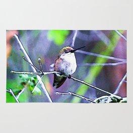 Sleeping Hummingbird. © J&S Montague. Rug