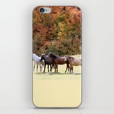 Horses Valley iPhone & iPod Skin