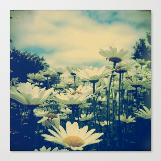 Daisy Love Canvas Print
