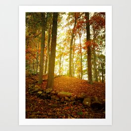 Autumn Woods with Stone Wall Art Print