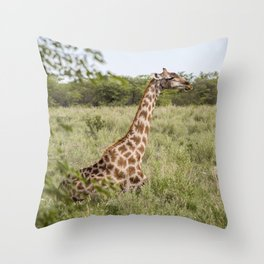 giraffe big Throw Pillow