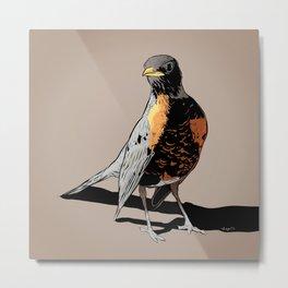 Robin :: Bird Art Print Metal Print
