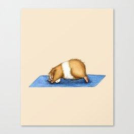 Yoguineas - Downward Facing Dog Canvas Print