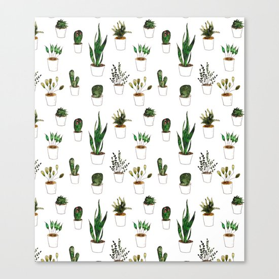 Green plants in white pots Canvas Print