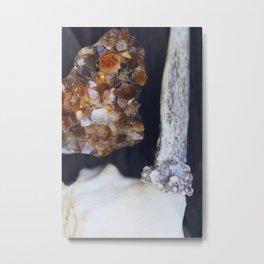 Citrine and Bone Metal Print
