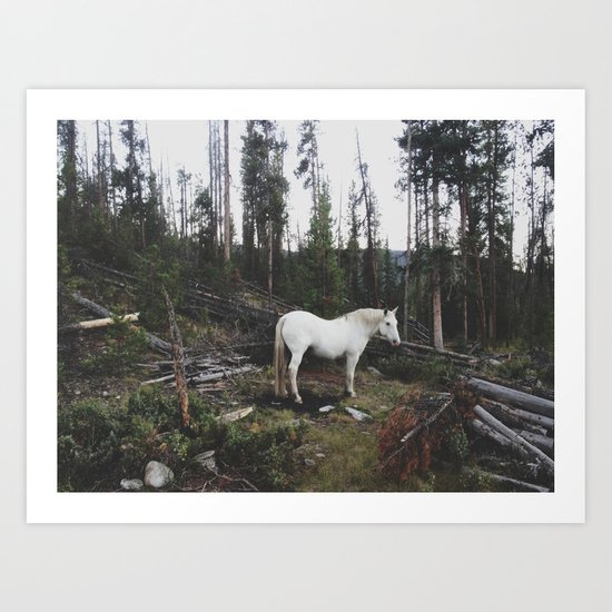The White Horse Art Print