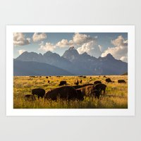 Bison on the Move Art Print