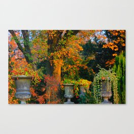 Autumn Urns Canvas Print
