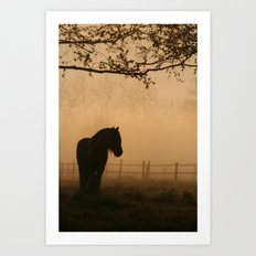 a pony Art Print