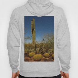 Saguaro and Mother in Law Pillow Hoody