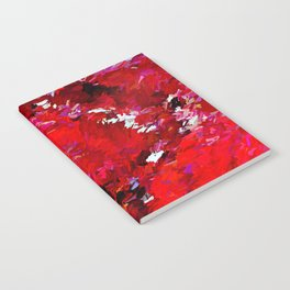 Red Rocks Abstract Notebook