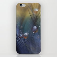 Taking Chances iPhone & iPod Skin