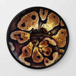 Ball of Python Wall Clock