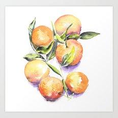 Sweet Clementines Art Print