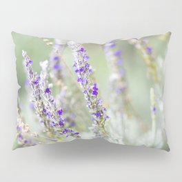 Lavandula Angustifolia (Lavender) Pillow Sham