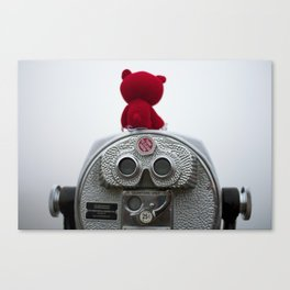 I'm Seeing Red Canvas Print