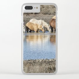 Bachelor Band at the Waterhole Clear iPhone Case