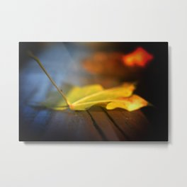 the fallen leaf Metal Print