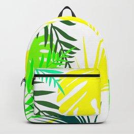 Naturshka 72 Backpack