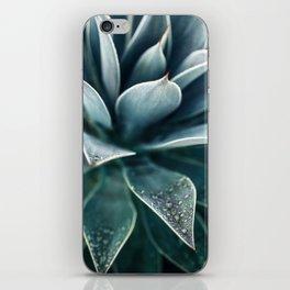 Agave Rain #1 iPhone Skin