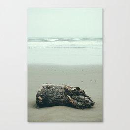 La Push Log Canvas Print