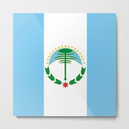 flag of Neuquen Metal Print