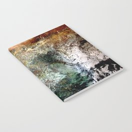 UAPCR Notebook