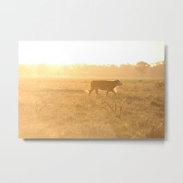 Exploring the Fields Metal Print