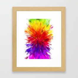 Colors of Life Framed Art Print