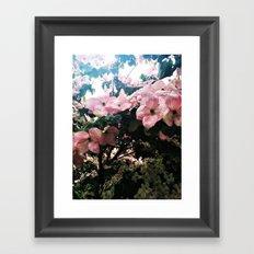 Dogwood Rainful Framed Art Print