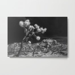 Joshua Trees and Boulders in Infrared Black and White at Joshua Tree National Park California Metal Print