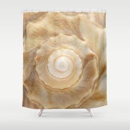 Lightning Whelk Seashell Shower Curtain
